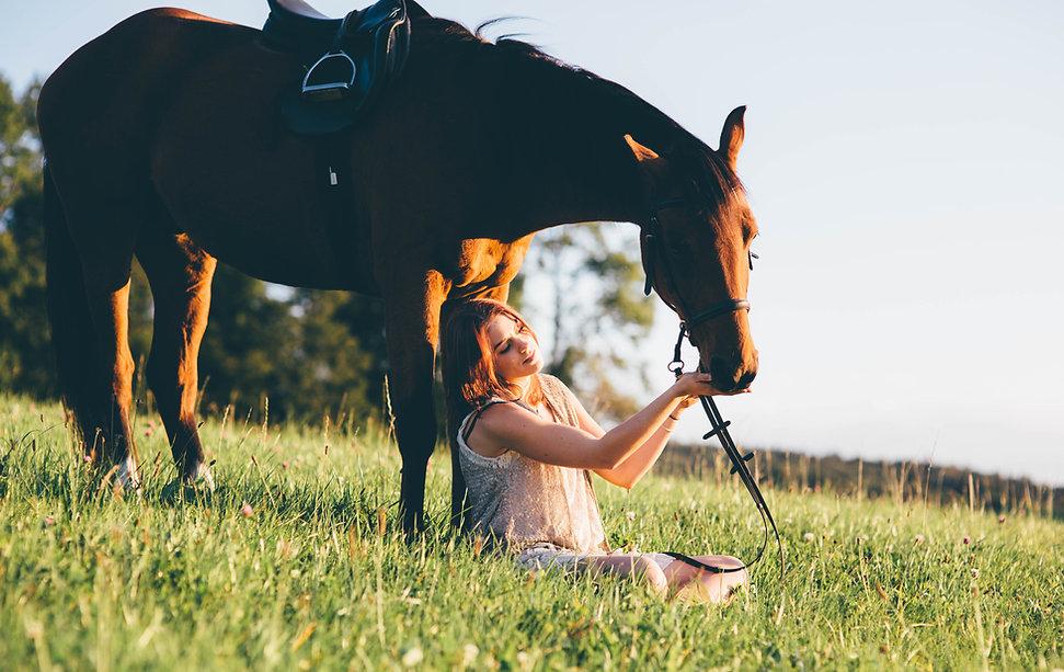 Tierhomöopathie Seile I Dyanimal I Carol Seiler