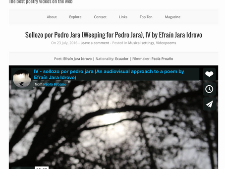 A review of my project An Audiovisual Approach to sollozo por pedro jara - estructuras para una eleg