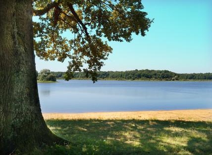 Lac du BOURDON Arsène JURMAN.jpg