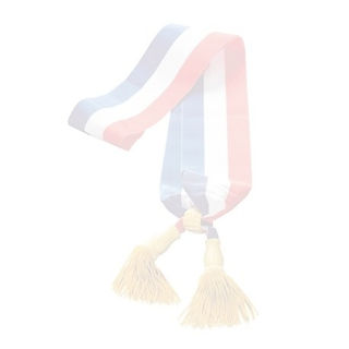 echarpe-tricolore-maire-or_edited_edited