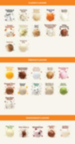 classic premium connoisseur ice cream flavours