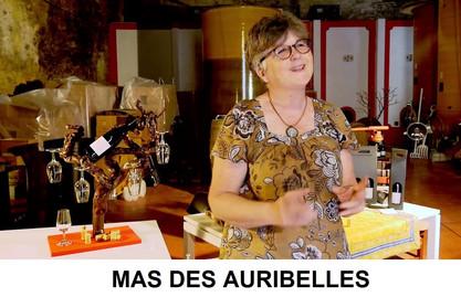 Marie Helene Chassagne SITE.jpg