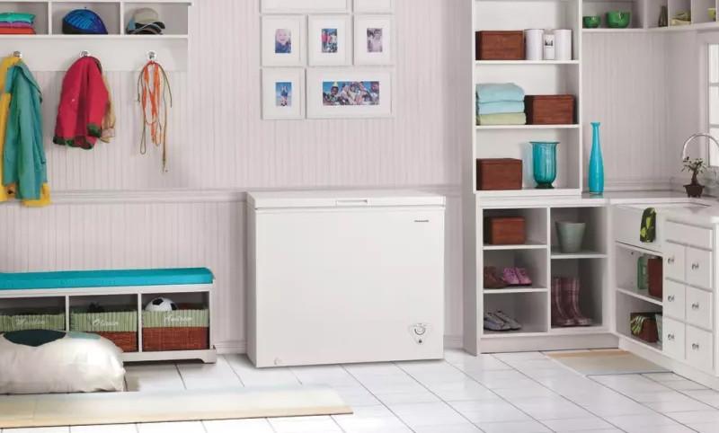 Chest Freezer- food storage