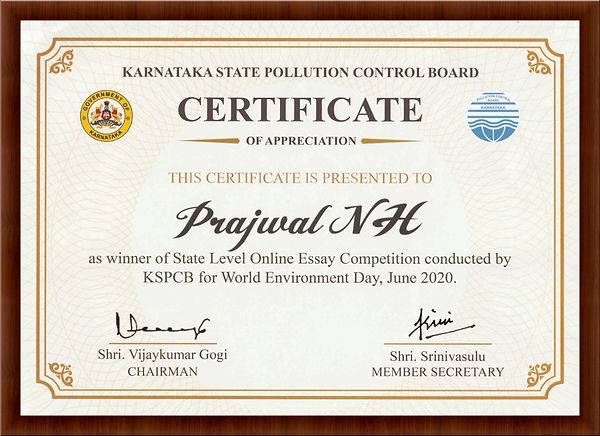 Certificate of Winner-2.jpg