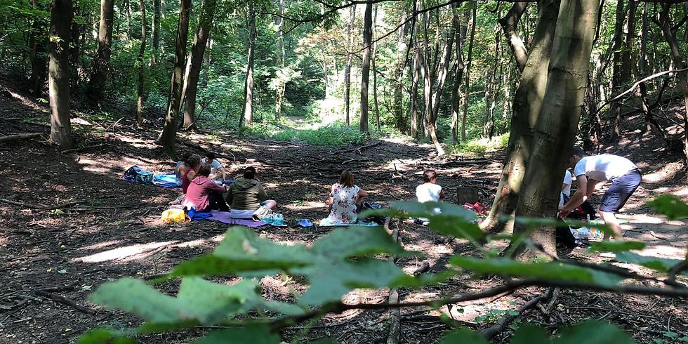 AufstellungsTAG im Wald