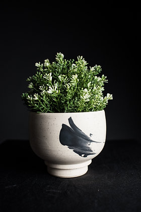 Bowl Planter with Fitted Drip Tray