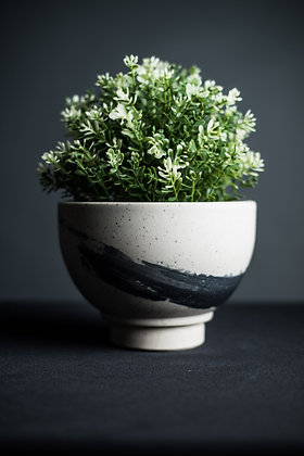 Bowl Planter 1 with Fitted Drip Tray