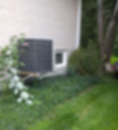 Gardening, Weeding, Brush Removal