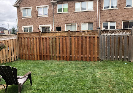 fence 2.jpeg
