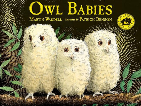 Drop-offs and tears: Our 5 favorite picture books to help soothe separation anxiety