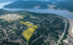 landing page km.jpg