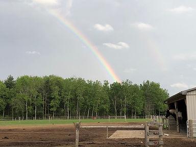 Barnyard, horse and rainbow at Spirit's Whisper Ranch