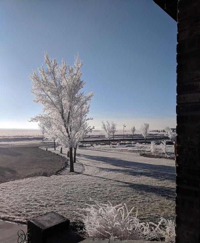 Winter frost in StoneGate
