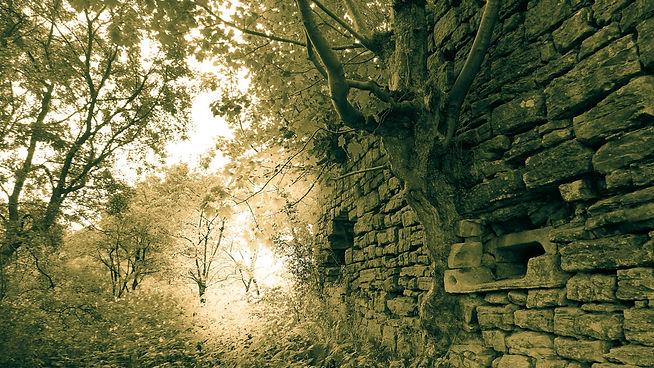 Peel Castle 2013 - 20.jpg