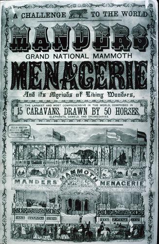Manders Menagerie Poster