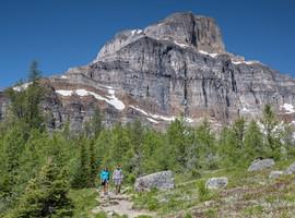 Sentinal Pass 1, Canada