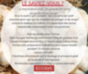 La_décoction_d'ail_rend_de_grands_servic