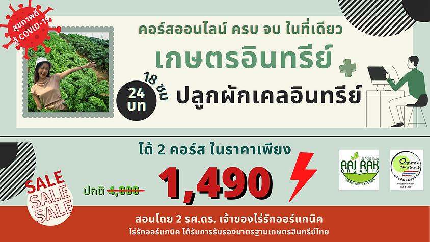 Ads-เกษตร-ปลูกเคล ราคา 1490.png