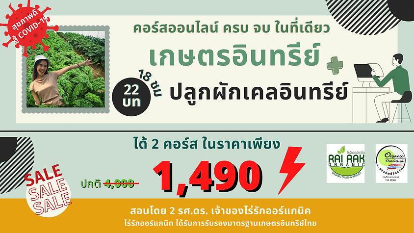 Ads-เกษตร-ปลูกเคล.png
