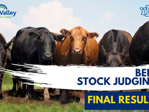 YFCU Beef Stock Judging Final Results 2021