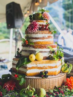Again, the beautiful cake at a small Orcas Island wedding.