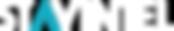 stayintel logo_horizontal white with col