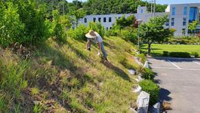 [Volunteer activities in Wonju Factory in 1Q 2019] Cleansing activity …