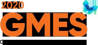 2020.10.15-16 GMES