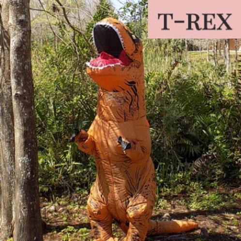 Dinosaur Package