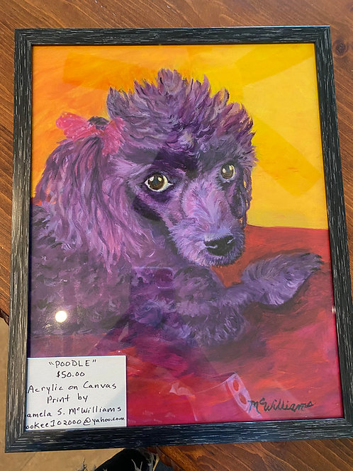 105 Poodle, Acrylic Print 11x14