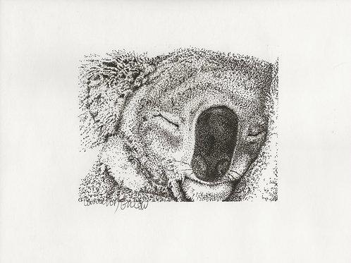 114 Koala Nap 11 1/2x 9 ink