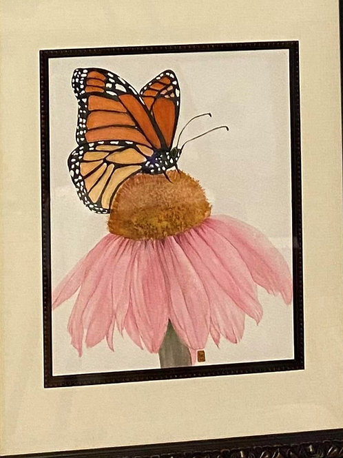 100 Monarch on Echinacea Watercolor