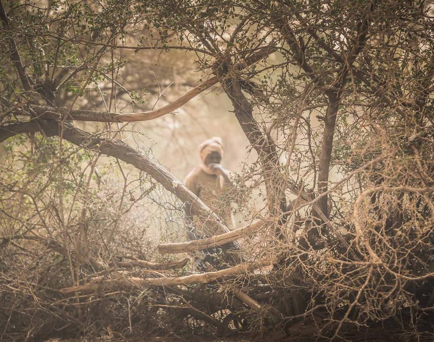 Hors piste Mauritanire - People-3.jpg