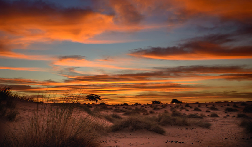 Hors piste Mauritanire - P1-6.jpg