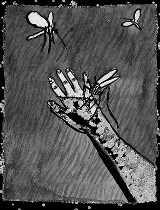 Mosquito, Original Artwork