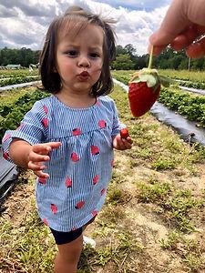 strawberryfieldgirl.jpeg