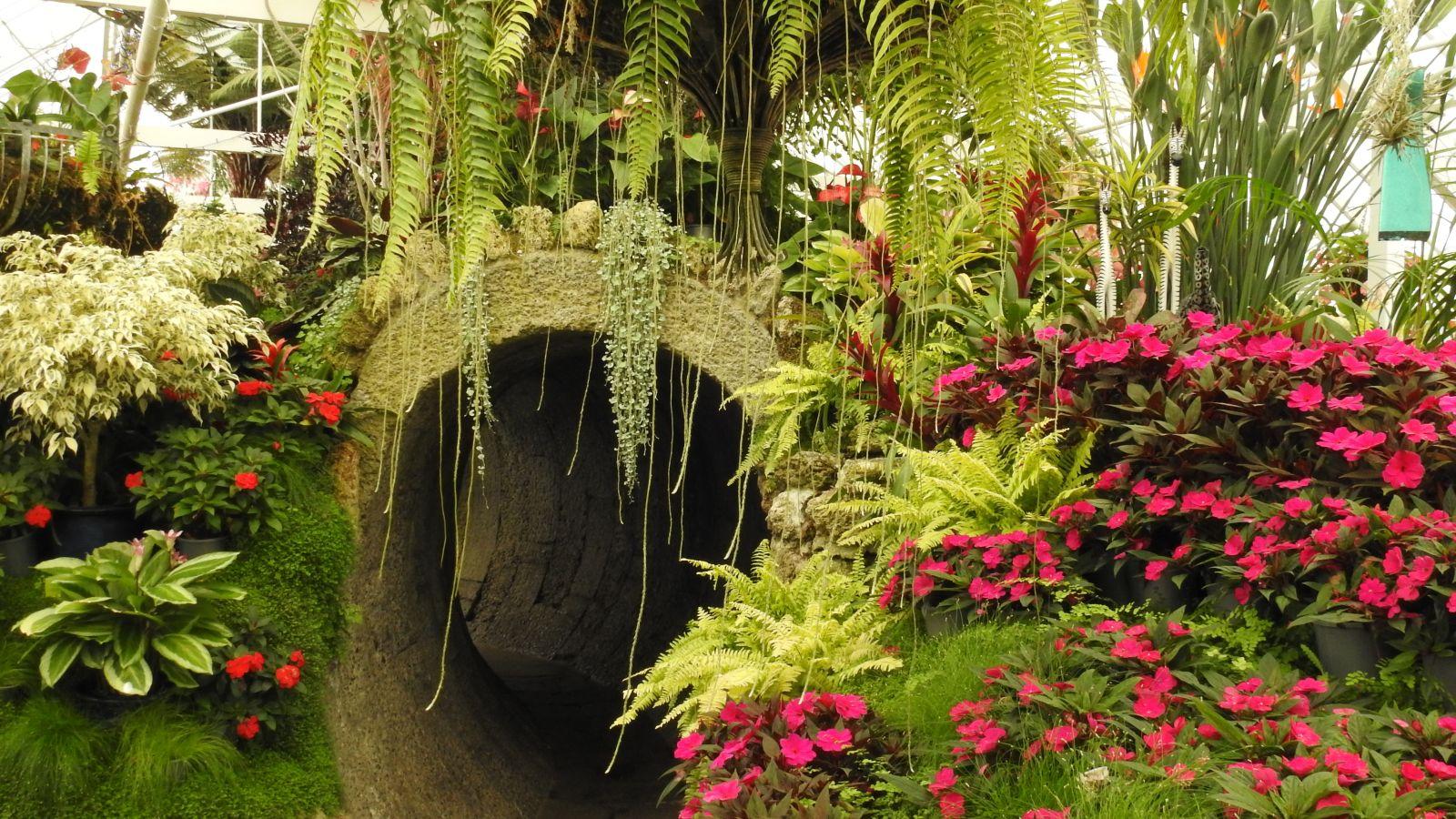 TBHS Wanganui Trip 16 March 2019 36