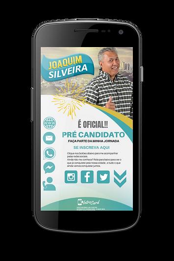 IntroCard Brasil Portfolio for website (
