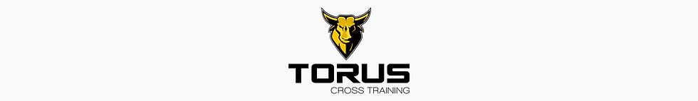 1 torus.png