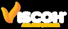 viscoh logomarca.png