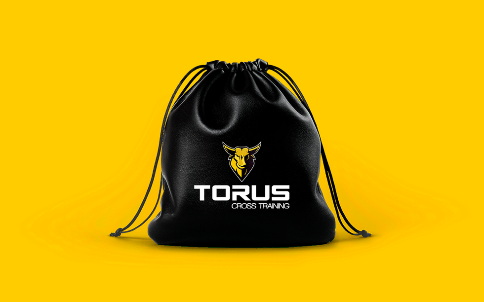 torus.png