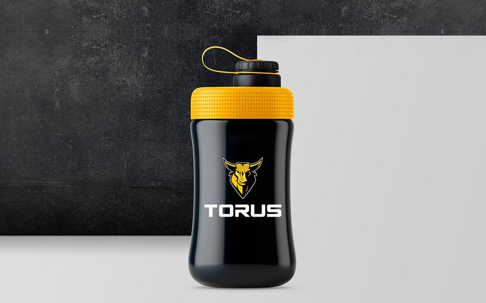torus 4.png