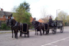 horse drawn hearse funeral