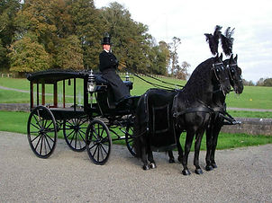 black horse drawn hearse
