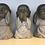Thumbnail: Triss i Buddha