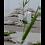 Thumbnail: LED Blockljus 15 cm