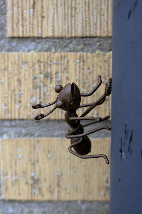 Myra med magnet lilla