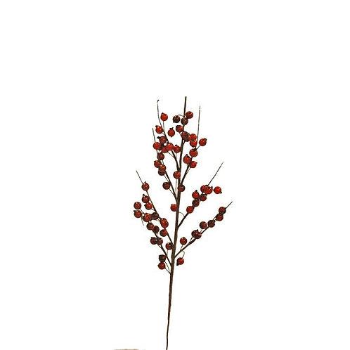 Kvist röda bär