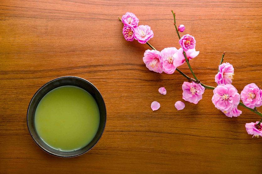 Learn Japanese Tea Ceremony