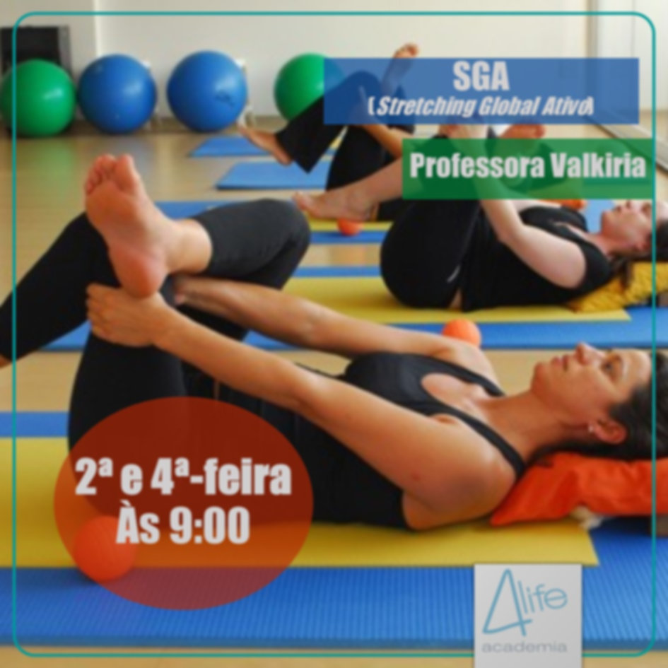 Cartaz SGA.jpg